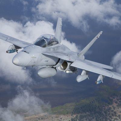 Hornet monitoimihävittäjä
