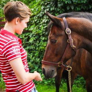 Nainen syöttää hevoselle ruohoa