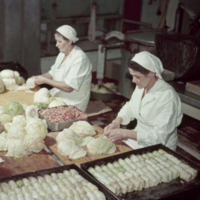 Naiset valmistavat kaalikääryleitä.