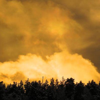 Keltainen taivas Lahdessa.