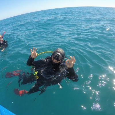 Sukelluspuvussa oleva nainen veden pinnalla.
