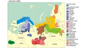 De uraliska språkens geografiska utbredning.