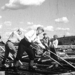 Metsäteollisuus toi Lapille leivän.