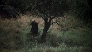 Mies maisemassa. Kuva elokuvasta Stalker.