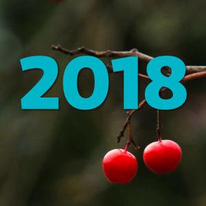 """Vintriga bär och texten """"2018"""""""