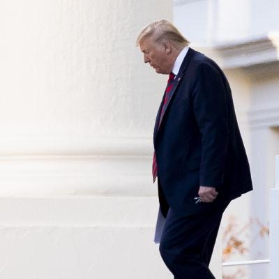 Donald Trump se gå ned för en trappa mellan pelare utanför Vita huset.