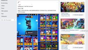 Skärmdump från en grupp på Facebook där ett spelkonto säljs för 50 euro.