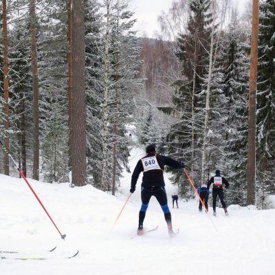 Finlandia-hiihtäjiä ladulla.