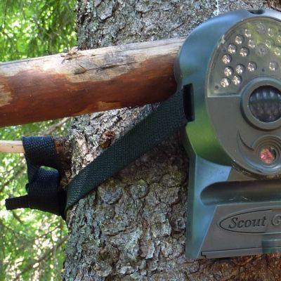 Riistakamera puussa.