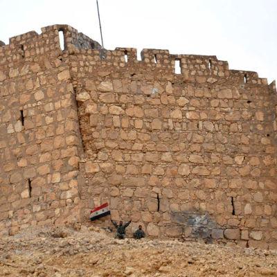 Syriska regeringsstyrkor firar återtagandet av Palmyra