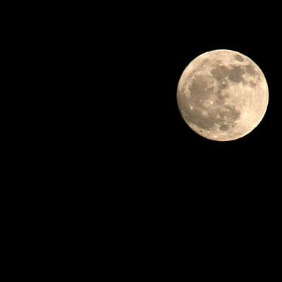 Bild på månen.