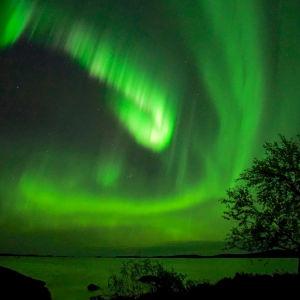 Öisessä kuvassa järvenranta, lehtipuu ja revotulet. Vastarannalla häämöttää Luosmavaara.