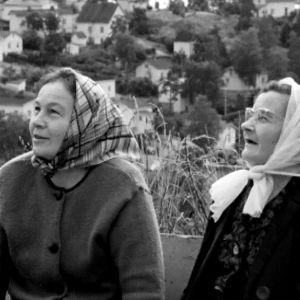 Kaksi naista ihailee Pispalanharjua.
