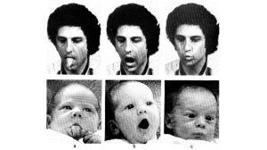 kuvasarja miehestä ja vauvasta joilla samat ilmeet