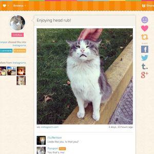 En nöjd katt på Catmoji