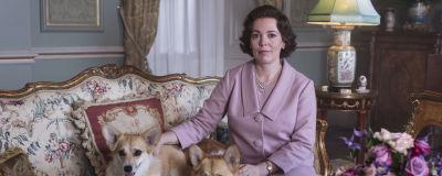 Olivia Colman som spelar drottning Elizabeth sitter i en antik soffa i en vacker salong med två av sina Corgis intill sig.