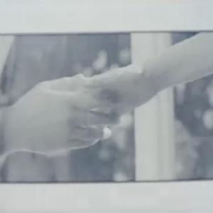 Trailer för Arkivet, 2011