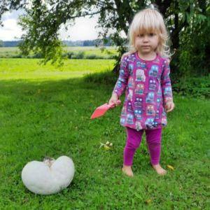 Två bilder på stor röksvamp, på bilden till vänster står en flicka med röd plastspade bredvid svampen.