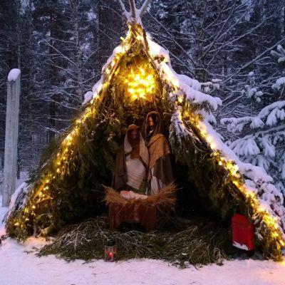 Jouluseimi lumisessa maisemassa