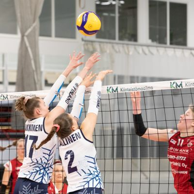 Iina-Reetta Kaikkonen pelaa verkolla.