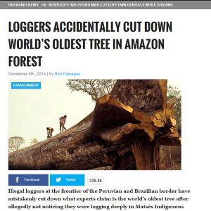 Ruutukaappaus World News Daily Reportin verkkosivulta