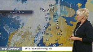Seija Paasonen förevisar vädret 2015.