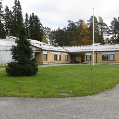 Metsäntutkimusasema on toiminut Punkaharjulla liki 100 vuotta.