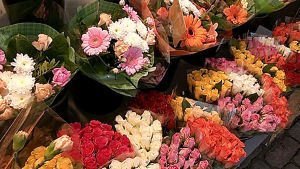 Erilaisia kukkakimppuja