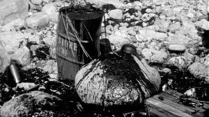 Öljyä ja tavaroita rantakivikossa. Neuvostoliittolaisen Rafael-tankkerin öljyonnettomuuden jälkiä Porvoon saaristossa keväällä 1970.