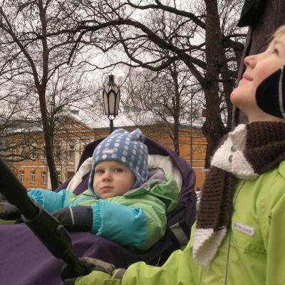 Matias och Lauri Vuokko följde med då domkyrkans julgran restes.