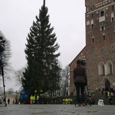 Resningen av julgranen direktsändes på Yle arenan