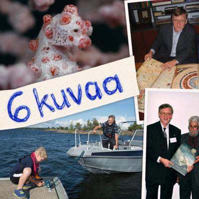 Juha Nurmisen kuusi kuvaa