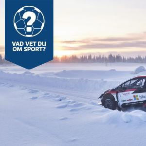 Paradbild för Yle Sportens quiz 17.1 2021