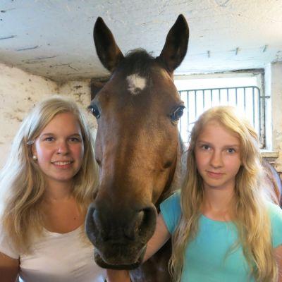 hevostytöt ja hevonen