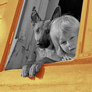 Ett barn och en schäferhund tittar ut ur ett öppet fönster i Trä-Vallgård i Helsingfors.