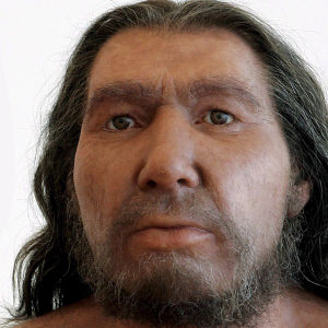 Two Neanderthal men with different distinctive growth of hair pictured in the Rheinisches Landesmuseum in Bonn, Germany, Tuesday, 13 June 2006.