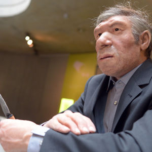 A replica of a Neanderthal man has been dressed in modern clothes at the Neanderthal Museum in Mettmann, Germany, 03 May 2012.