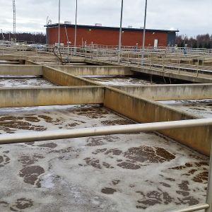 Jätevesialtaita Oulun Taskilan jätevedenpuhdistamossa.