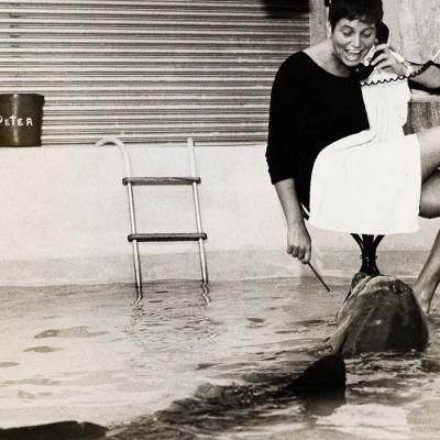 Prisma: Nainen joka puhui delfiineille, yle tv1