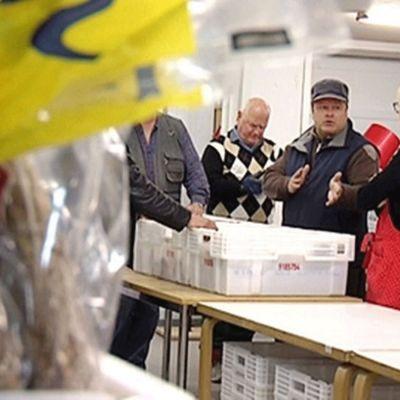 Hursti delar ut mat i Berghäll