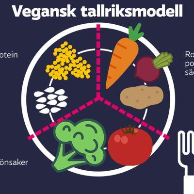 Vegansk tallriksmodell i enlighet med THL:s rekommendationer för barnfamiljer