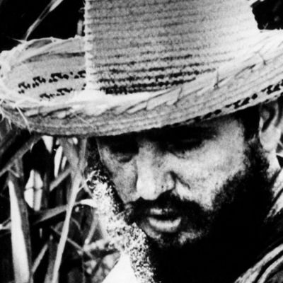 Olkihattuinen Fidel Castro ruokojen keskellä.