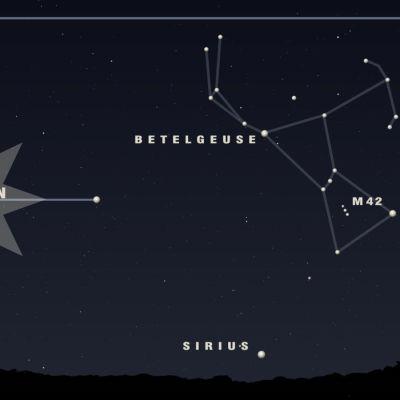 Orion ja Sirius