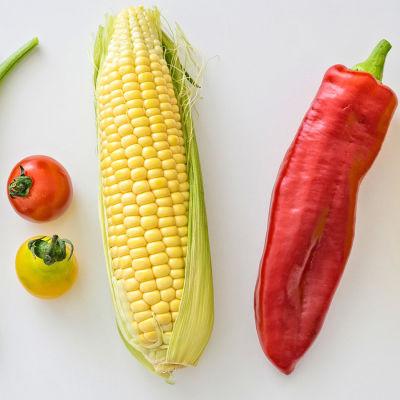 Bönor, tomater, en majskolv, en paprika och en gul pumpa.