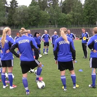 Finlands damlandslag i fotboll, 2013.