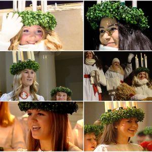 Collage med nio Finlands lucior från 2008 framåt.