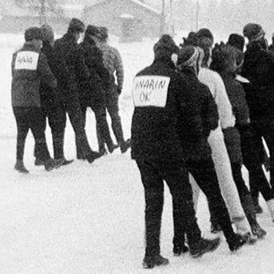 Ivalossa joukkueet kilpailevat letkajenkan maailmanennätyksestä vuonna 1964.