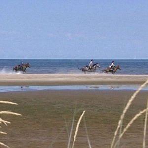 Ratsastajia Hailuodon rannalla