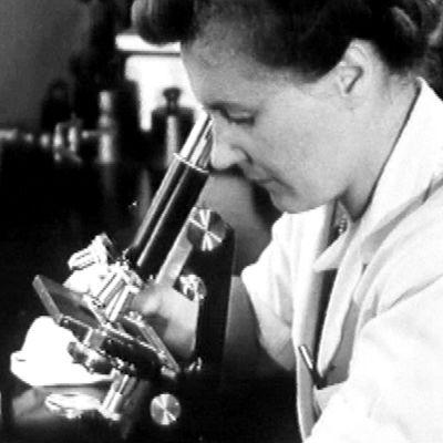 Laboratoriossa tutkitaan mikroskoopilla (1948).