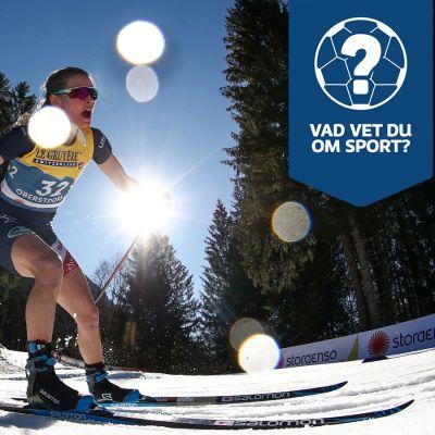 Yle Sportens helgquiz med bland andra Jessie Diggins.